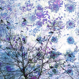 Garden with Violet Circles, Var.11 - Grey and Pink