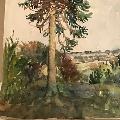 Tree, Wootton Farm