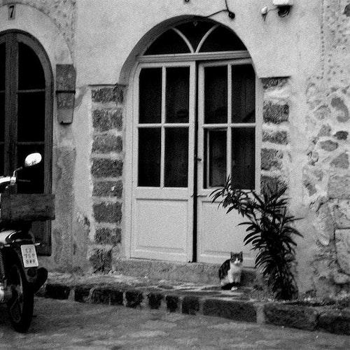 Mallorca Siesta