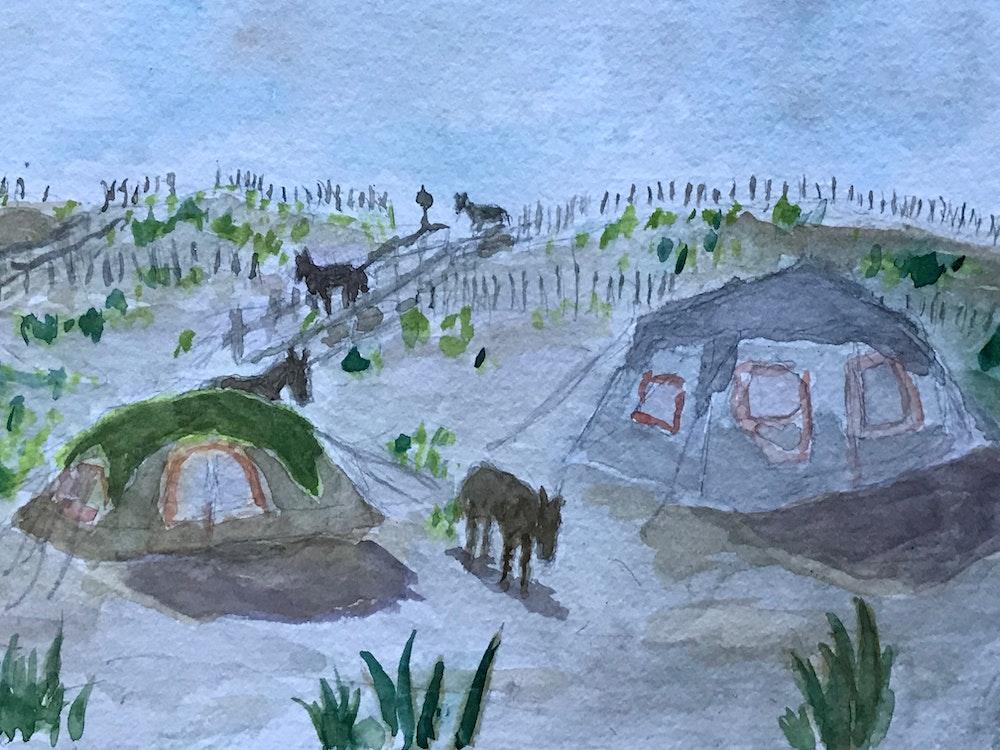 campsite intruders