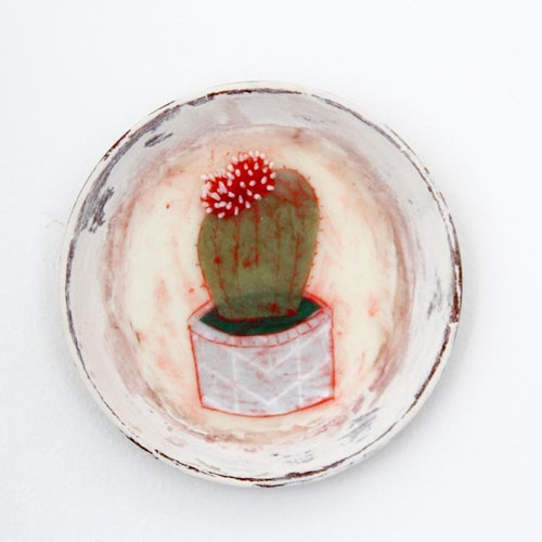 Cacti Bloom Round - Succulent series