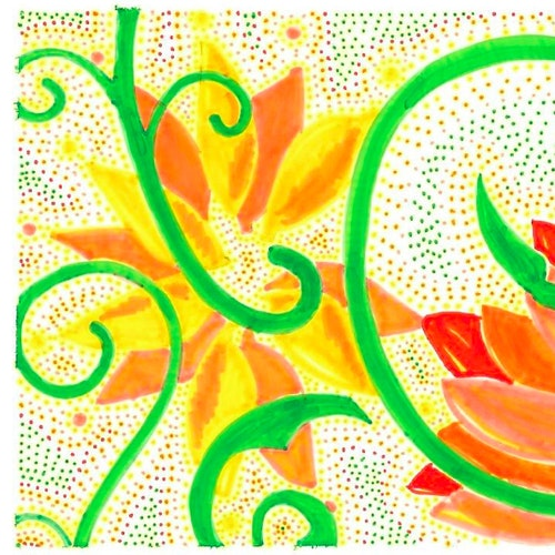 Orange Summer Flowers