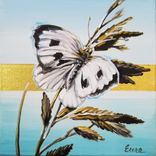 Beach Butterflies - Cabbage White