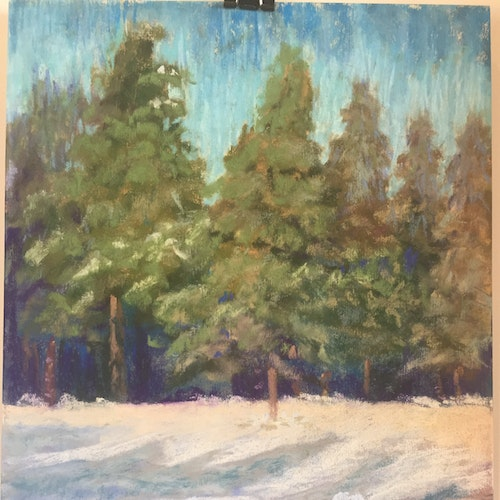 Donner Trees