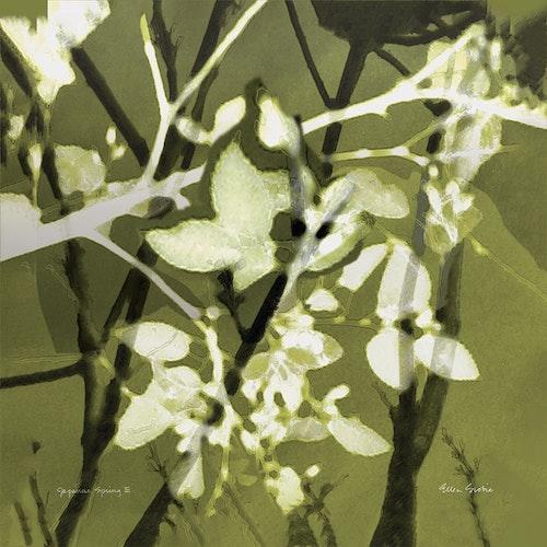 Japanese Spring 03 - Variation Green Tea