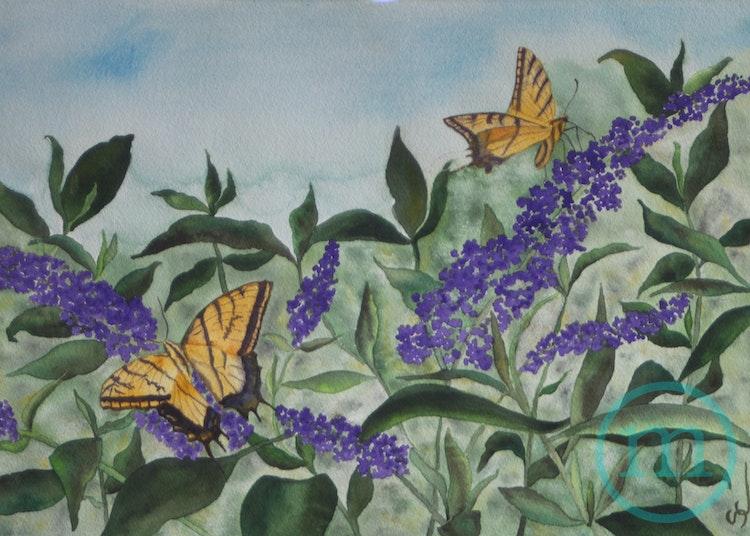 Butterflies! 14 x 20 Sold