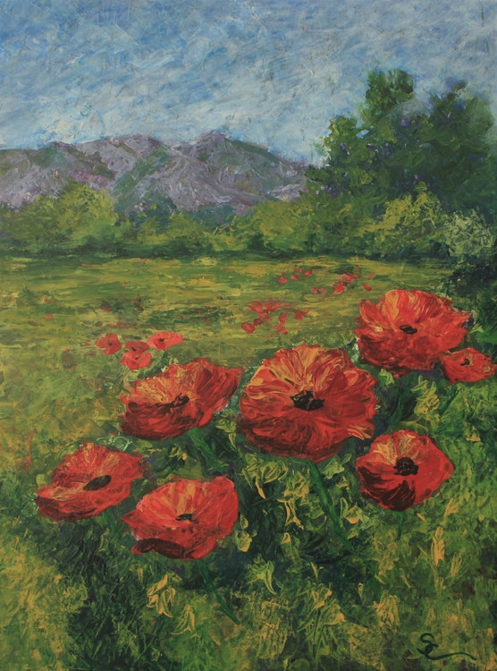 Poppies in the Rockies
