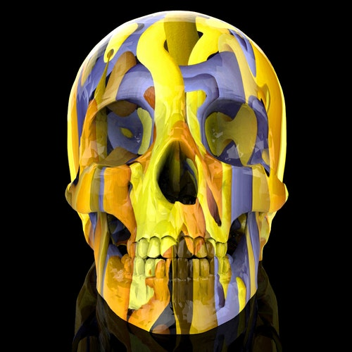 Mojo (Skull Print)  5x5 Limited Edition Print