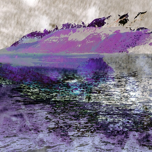 Sockeye Summer, Var.3 - Purple
