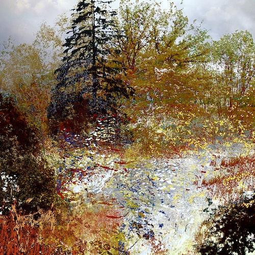 Tree is Shook, The - var1 Autumn