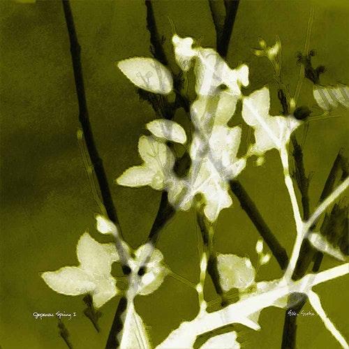 Japanese Spring 01 - Variation Green Tea