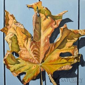 Leaf in Repose