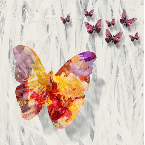 This is Not a Butterfly, It is a Garden - Series of 3