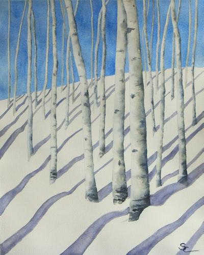Snowy Aspen Grove