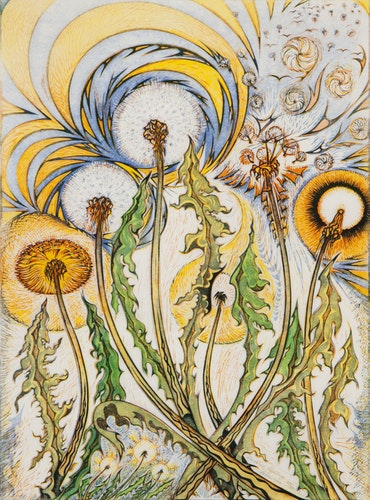 Dandelions Rejoicing