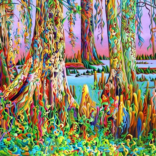 Cypress Spirit Rising