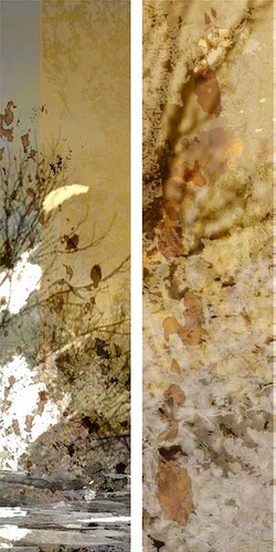Walking Barefoot in Cold Water Diptych
