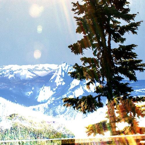 Whistler Sun Break