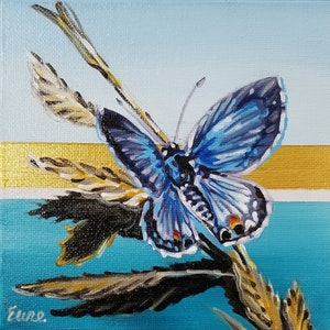 Beach Butterflies - Miami Blue