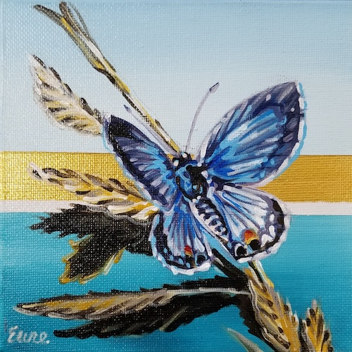 Beach Butterflies - Miami Blue