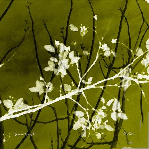 Japanese Spring 02 - Variation Green Tea