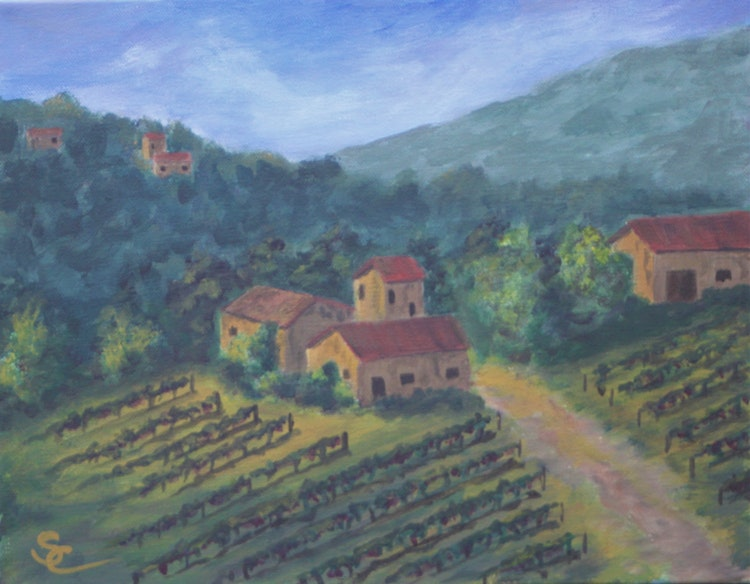 Tuscan Vineyards