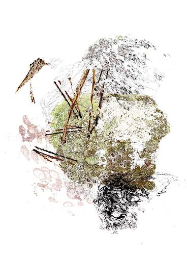 Eco Hive 1