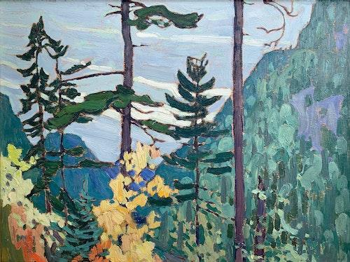 Yellow Birches, Algoma 1919