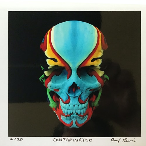 Contaminated (Skull Print)  5x5 Limited Edition Print