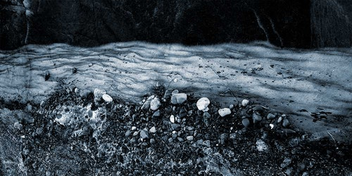 Intertidal Dream