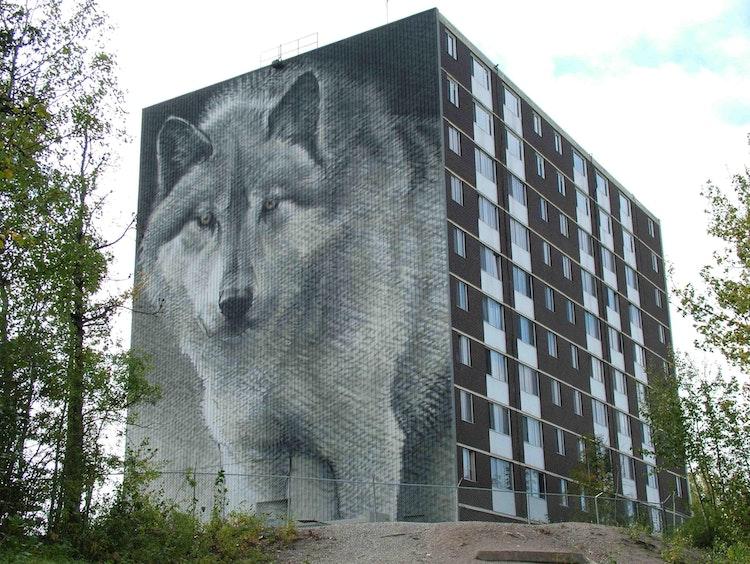Bateman's Wolf