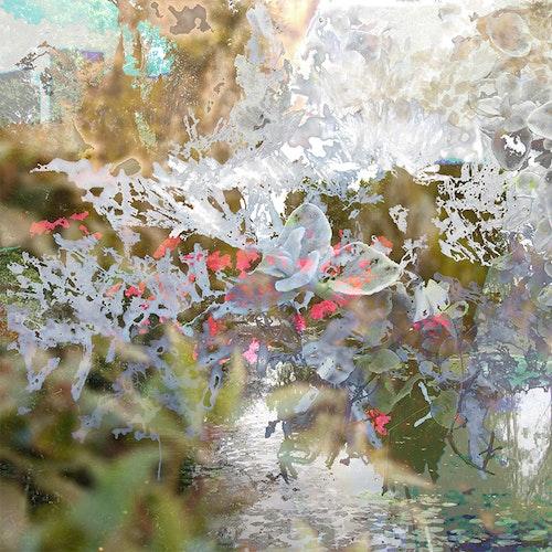 Beholden Pond, Var.2