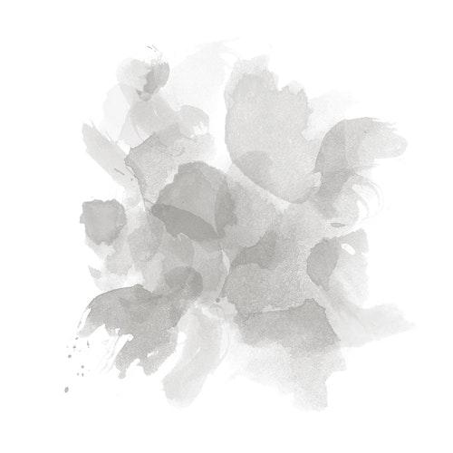 Watercolor Petals - Gray