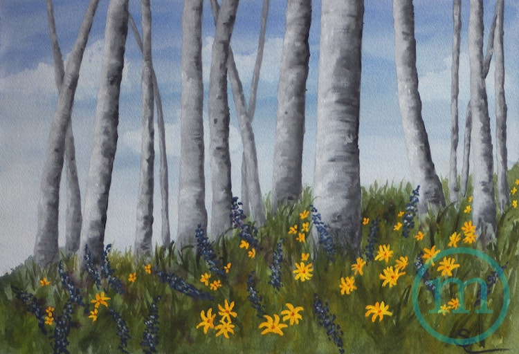 Spring in Crested Butte 14 x 20