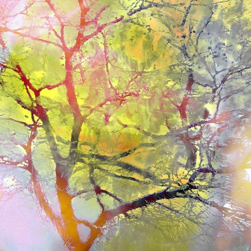 Carnival Tree