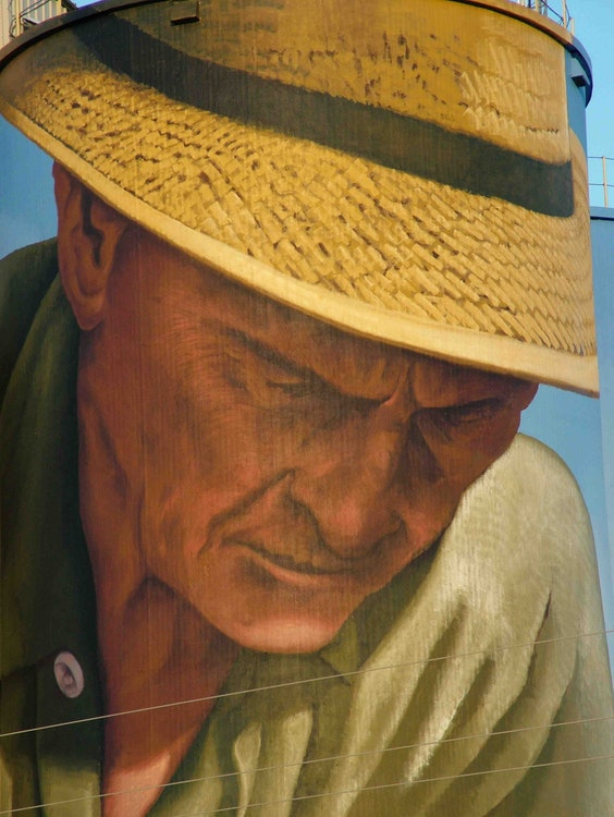 The Peanut Farmer by C5Charlie