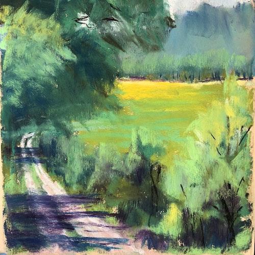 Summer Lane