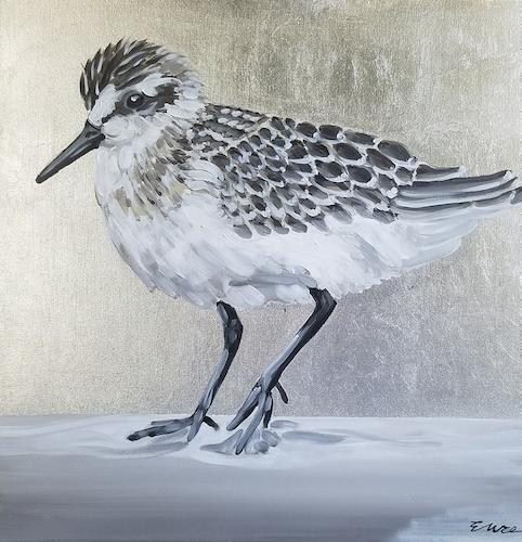 Silver Sanderling