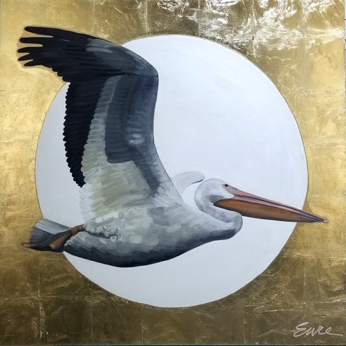 Right This Way - Pelican