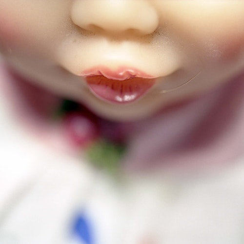 Doll Mouth (rose)