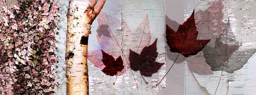 Autumn Leaf Collage Long