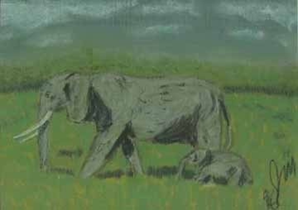 mother and son elephant walk