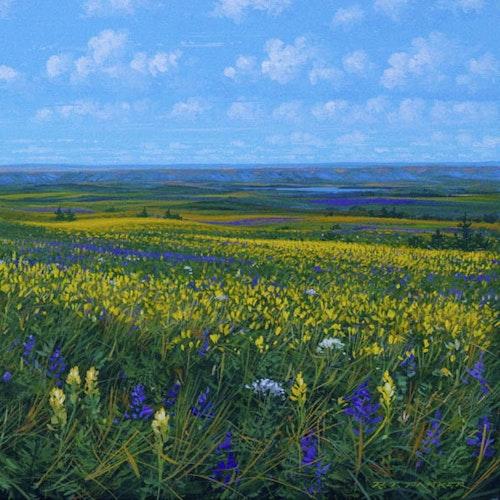 A Prairie Day