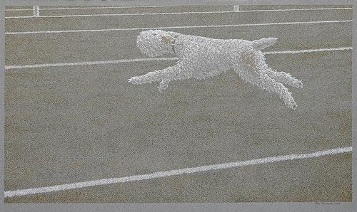 Running Dog 1968