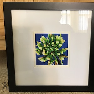 Clover Clarification Indoctrination 7x7 Limited Edition Print