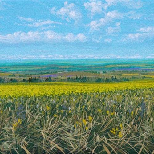 A Prairie Vista