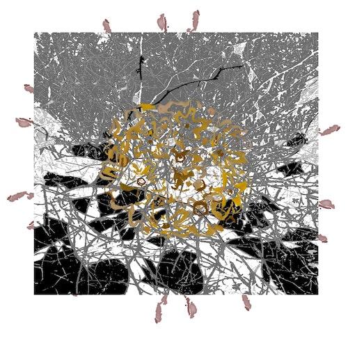 Geomancy Chrysanthemum