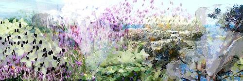 Westcoast Garden