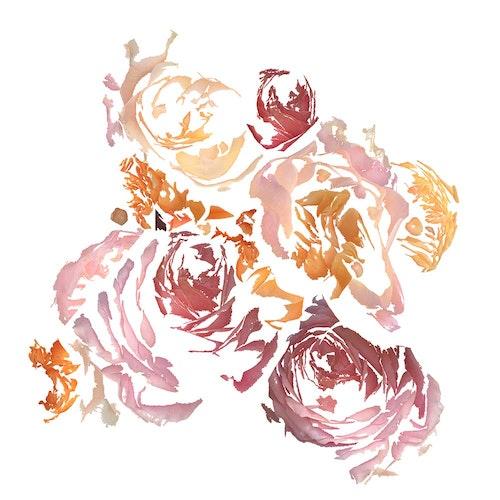 Roses Autumn
