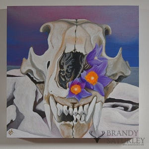 Nanook Crocus - Polar Bear Skull Prairie Crocus